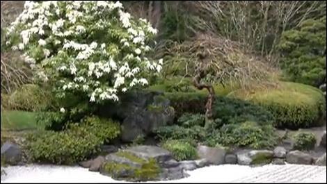 Традиционный японский сухой сад