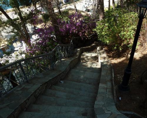 Лестницы и Террасы