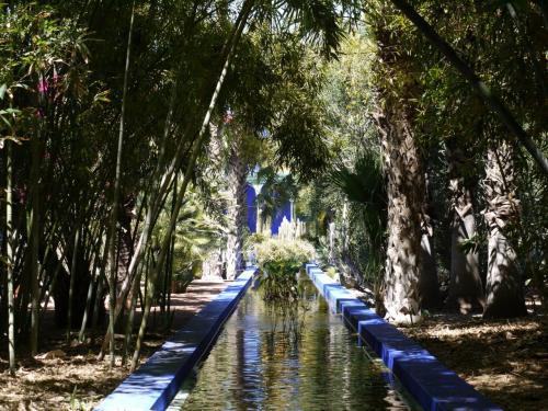 "Фото для ""Японский сад, пример"""